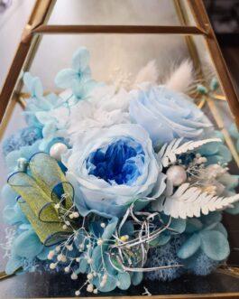 Goldenes Terrarium blauer Mix