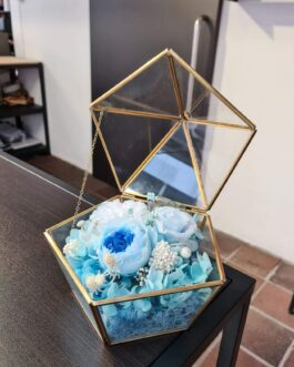 Schatullen-Terrarium blauer Mix