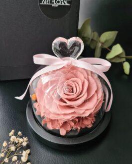 Rose in Glaskuppel