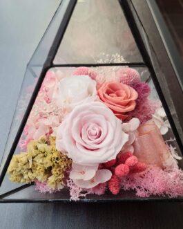 Schwarzes Terrarium Rosa Mix