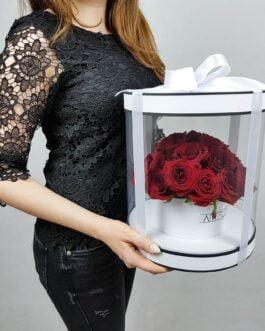 Rosen im Aquarium
